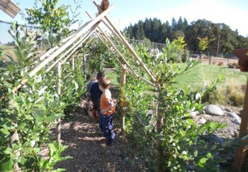 Lane embraced the use of natural greens to create fun play structures, such as tunnels.