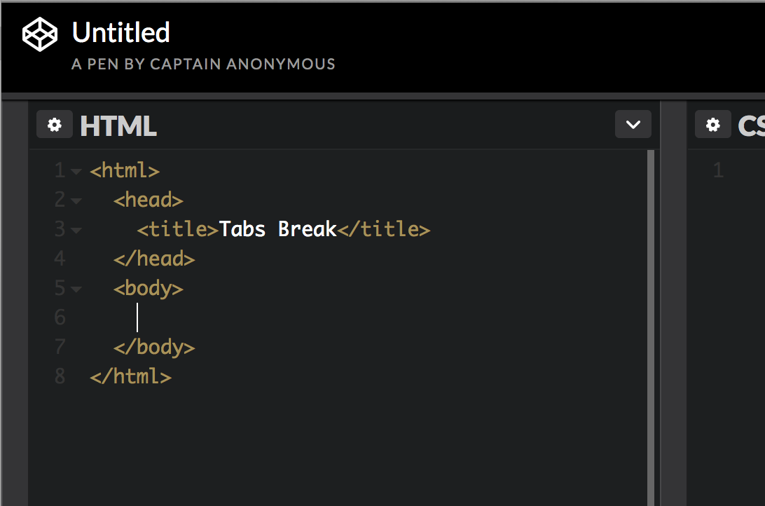 Screenshot of the Codepen edit interface